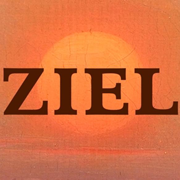 icoon_app_ziel_web